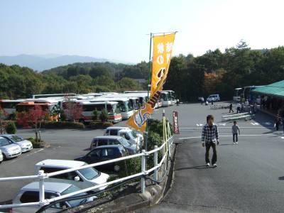 バス群.jpg