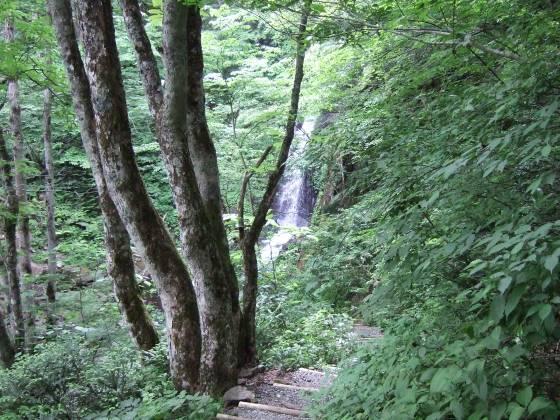 滝 王滝を見下ろす.jpg