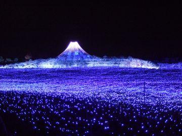 紫富士山.jpg