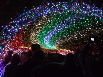虹のトンネル.jpg